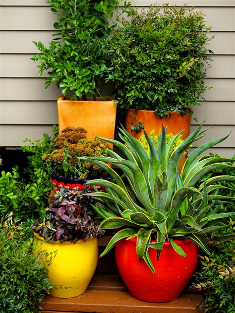 best container gardens embassy s stunning container gardens