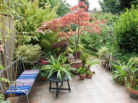 Plants For Small Patio by 10 Ideas For Using Large Garden Containers Hgtv