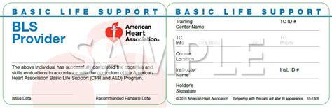 Healthcare Provider Bls Online Circuit Diagram Maker Bls Healthcare Provider Card Template