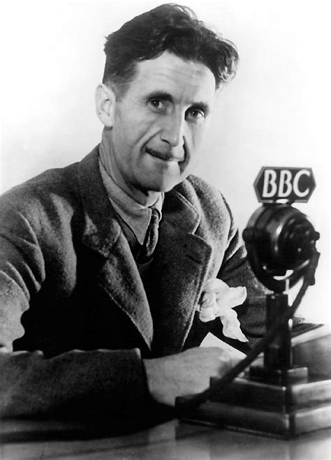 george orwell down the rabbit hole james thomas snyder