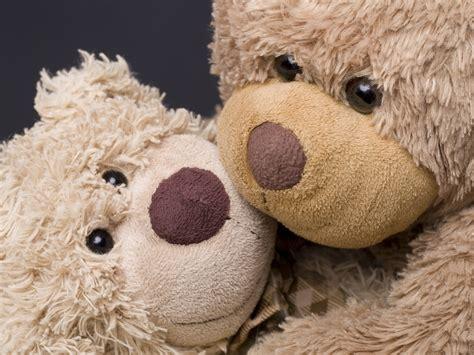 imagenes para fondo de pantalla de ositos osos de peluche tiernos para regalar imagenes de