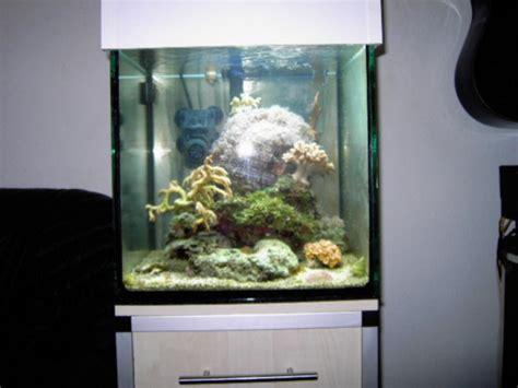gestell aquarium 40cm aquarium w 252 rfel aluminium gestell