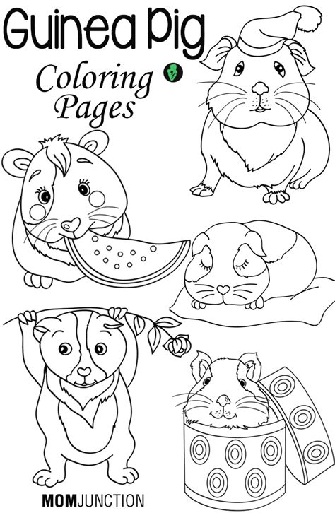 guinea pig coloring pages free printable sleep early coloring pages