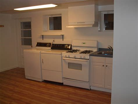basement kitchen ideas dgmagnets com easy basement kitchen for your inspiration to remodel home