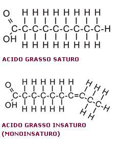 acidi grassi saturi e insaturi alimentazione grassi saturi e insaturi