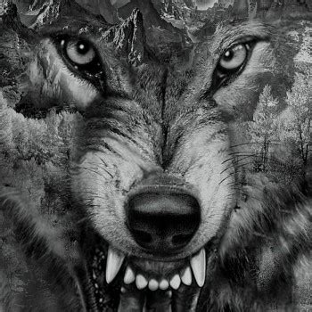 best arm tattoos idea amazing designs hd amazing wolf designs and ideas tattoolot