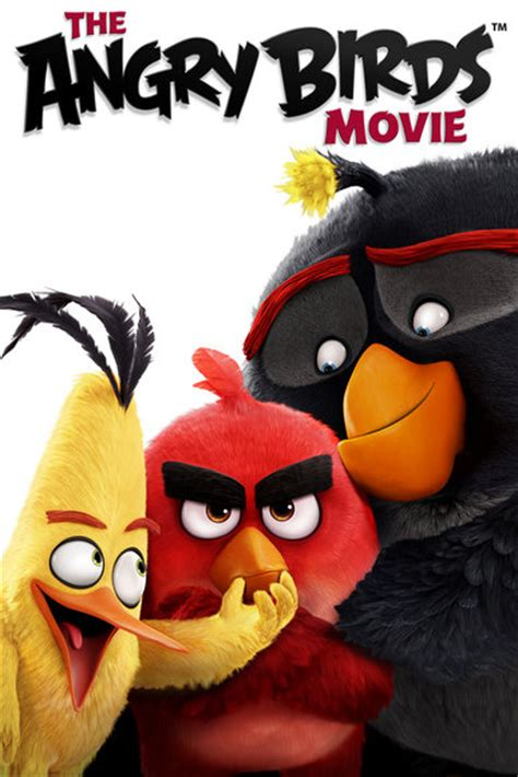 the angry birds movie dvd release date august 16 2016 the angry birds movie sony pictures