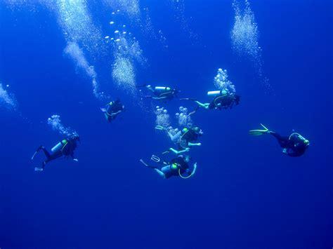 dive vacations explore scuba diving at turtle inn belize scuba diving