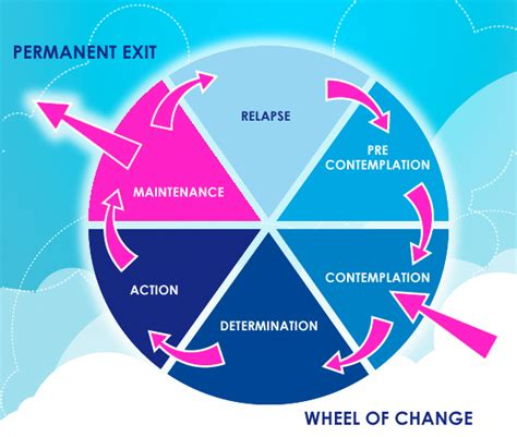 The Wheels Of Change by Family Support Network