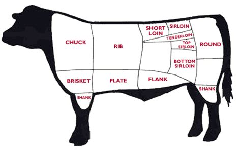 cow cuts diagram the taco maven a guide to and cooking tacos