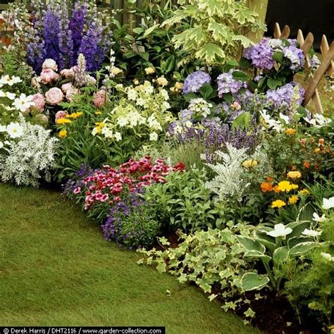 flower bed planner plan to imitate larkspur peony coreopsis silver