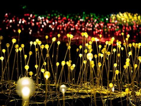 longwood gardens light tickets longwood gardens announces light a exhibition opening