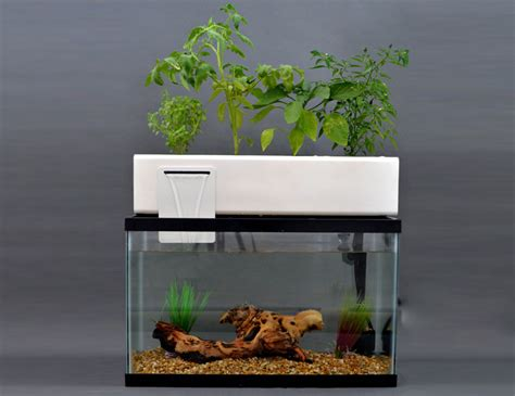 andrew de melos blue green box  fish waste  provide