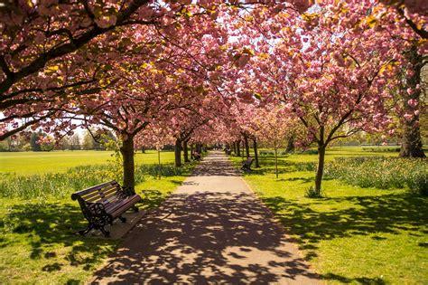 jardin paisajista ingles el jard 237 n ingl 233 s el romanticismo en su maxima expresion