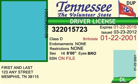 tennessee id card template tennessee drivers license editable psd template