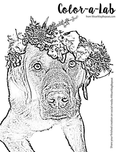 how i wear my crown coloring book books free printable flower crown coloring page for adults