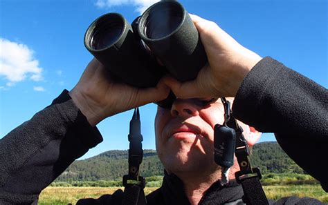 how to use binoculars helpful tips for the field 187 bird