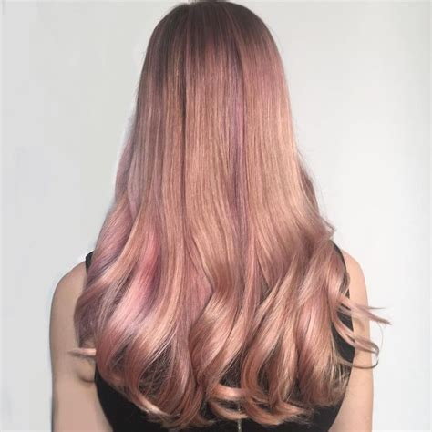 gold hair purple shoo before and after gold hair purple shoo before and after beige rose gold