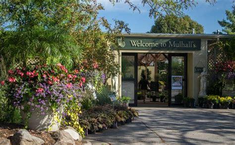 Garden Center Omaha Mulhalls Garden Store Omaha Ne Grows Most Of The Plant