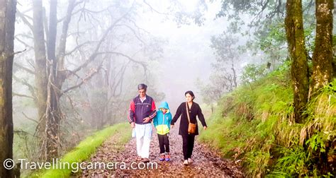 morning walk a journey of discover early morning walk around zero point in binsar wildlife