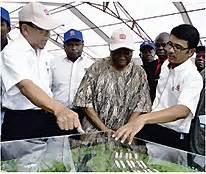 Pra Participatory Rural Appraisal Moehar Daniel Original farmlandgrab org quot halt sime darby plantation expansion quot
