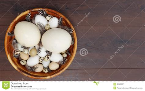 Decorated Blown Eggs by Happy Easter Stock Photo Image 41563501