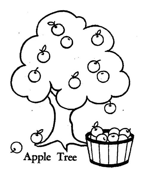 Tree Coloring Page Mr Printables Apple Tree Pictures To Color Coloring Home by Tree Coloring Page Mr Printables