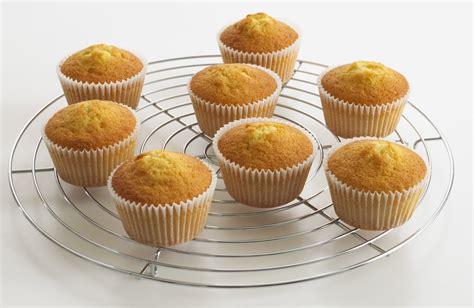 cupcake recipe easy vanilla and chocolate chip cupcake recipe