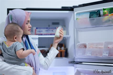 Freezer Khusus Es Batu review lemari es lg linear top freezer ola aswandi