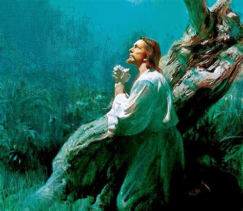 imagenes de ositos orando banco de imagenes y fotos gratis jesus orando parte 1