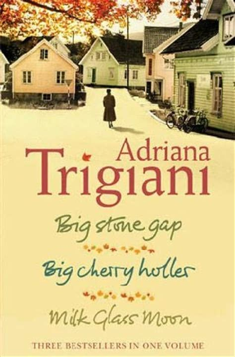 trigiani series the big gap trilogy big gap by trigiani