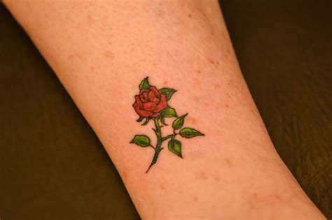 small rose tattoo on ankle small illustrator foot and ankle