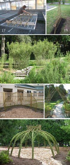 Garden Arch Norwich 1000 Ideas About Living Willow Fence On