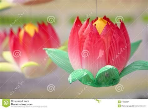 How To Make Paper Lotus Lantern - paper lotus lantern royalty free stock photography image