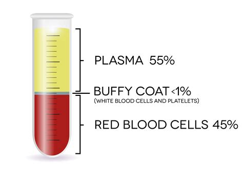 protein rich plasma platelet rich plasma stem cells 21