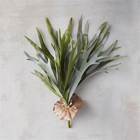 dekorasi menggunakan tanaman obat sakti desain