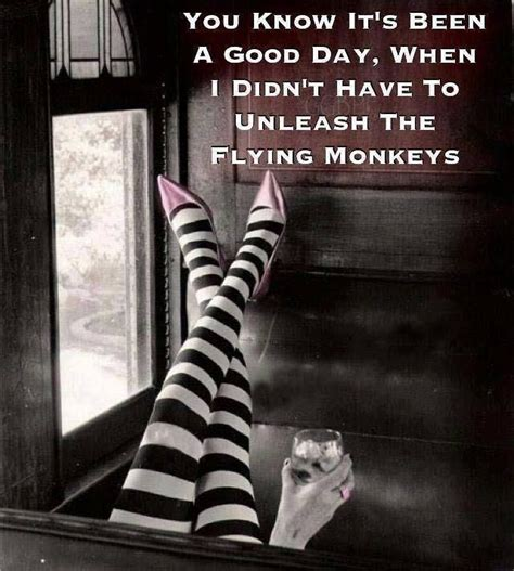 Flying Monkeys Meme - cranky pants pinterest monkey good day and funny memes