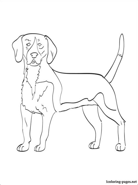 coloring book pages dog breeds free coloring pages of how to draw a doberman