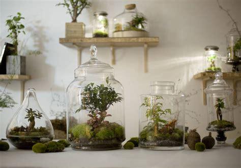 Décorer Appartement Pour Noel by 7 Id 233 Es De Terrariums Pour D 233 Corer Votre Appartement
