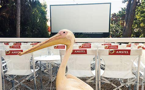 cineplex mantos the 10 best open air island cinemas in greece greece is