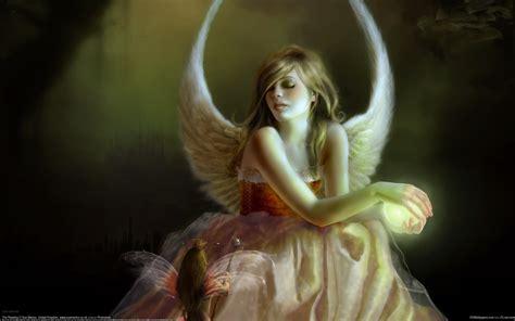 wallpaper girl angel angel girl elf wings wallpaper 1680x1050 resolution