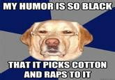 Racist Dog Meme - racist dog know your meme