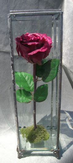 Box A Single Preserved Flower Represent Charm Perfection 1000 images about preserved wedding flowers in glass domes lanterns and jewelry boxes on