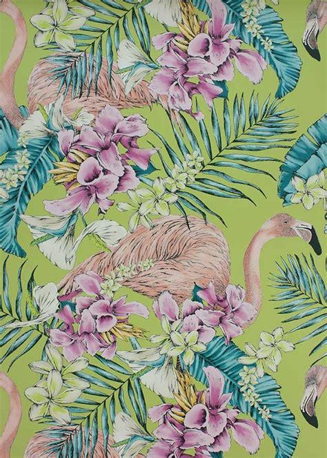 flamingo wallpaper matthew williamson les 25 meilleures id 233 es de la cat 233 gorie wallpaper flamingo