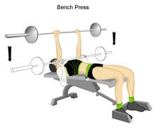 bench pressing for women weight lifting exericse for woman