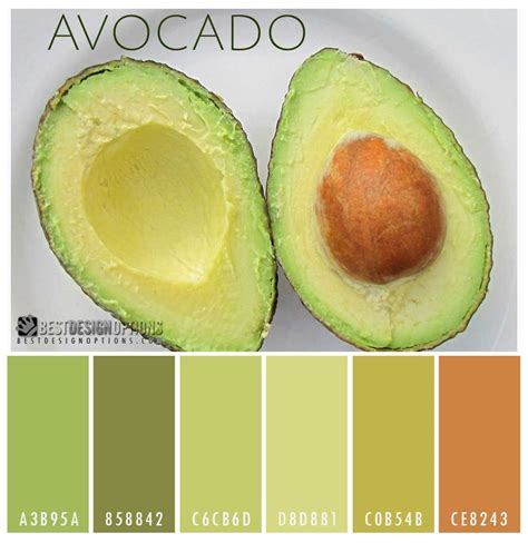 avocado color avocado colors colors