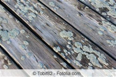 Moos Auf Holzterrasse by Moos Terrasse Entfernen Terrassenplatten Co