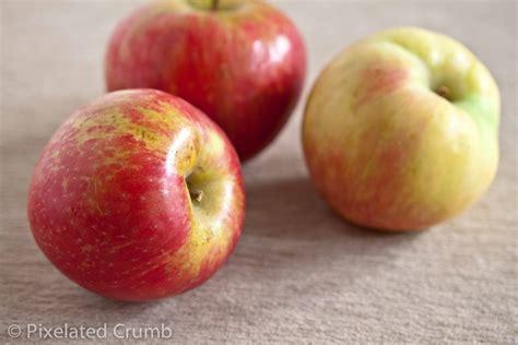 Apple For S apple cinnamon bread pixelated crumb