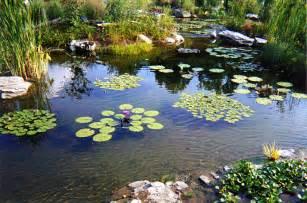 pond supply riverdale supply landscape supply manitoba