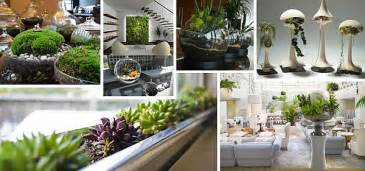 Modern Rustic Home Decor Ideas indoor gardening ideas to beautify your space